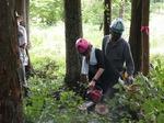 林業 初体験