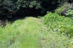 ハンパな草刈